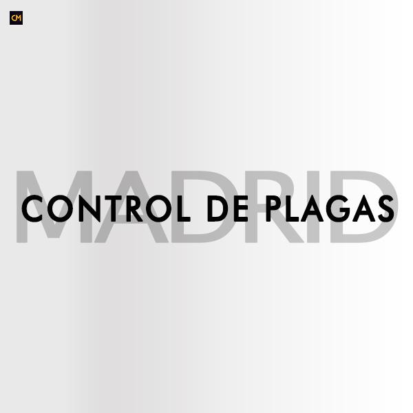 Control de Plagas Madrid