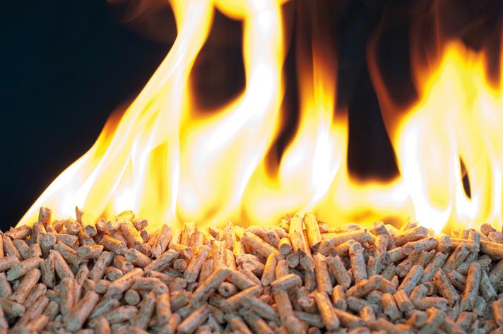 El mercado de la biomasa está en un momento de crecimiento